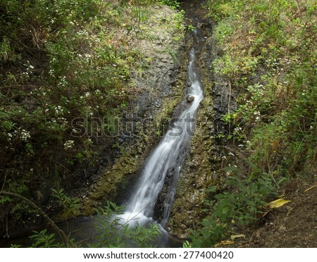 Gran Canaria, nature reserve Barranco de Azuaje between Moya and Firgas, one of very few water springs on the island, small cascade - stock photo