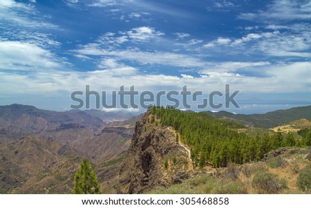 Gran Canaria, route Cruz de Tejeda - Artenara, canarian pine trees along a trail - stock photo