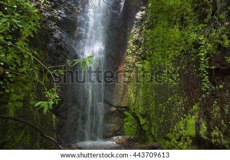Gran Canaria, waterfall in the ravine Barranco de La Mina, one of the three places where water runs always