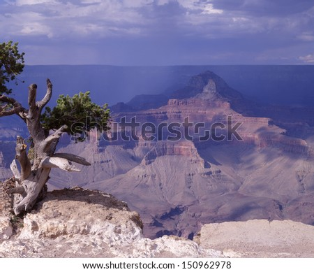 Grand Canyon National Park, Arizona, one of the wonders of the world is appreciated during a storm/Grand Canyon/The numbers of visitors to the canyon are not noticed due to the amount of open space. - stock photo