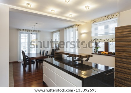 Grand design - Modern kitchen interior