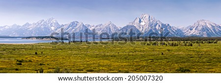 Grand Teton national park panorama, Wyoming, USA