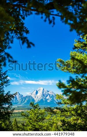 Grand Tetons Mountain Through Trees, Near Yellowstone.  Grand Teton National Park, Wyoming. - stock photo