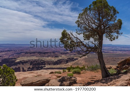 Grand View Point Overlook Canyonlands National Park Utah - stock photo