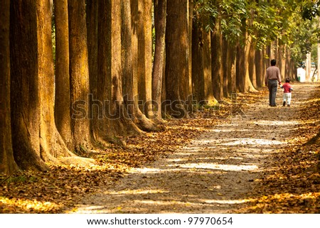 Grandfather and baby walk on country rural road in pine forest - stock photo