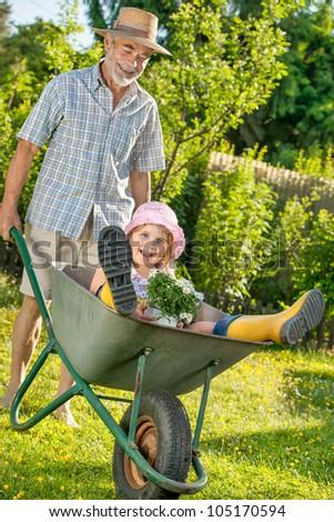 Grandfather giving granddaughter ride in wheelbarrow in the garden - stock photo