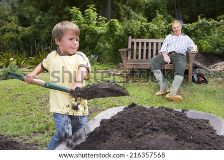 Grandfather watching grandson fill wheelbarrow with dirt - stock photo