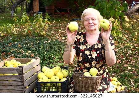 grandmother with apples harvest on the autumn garden background