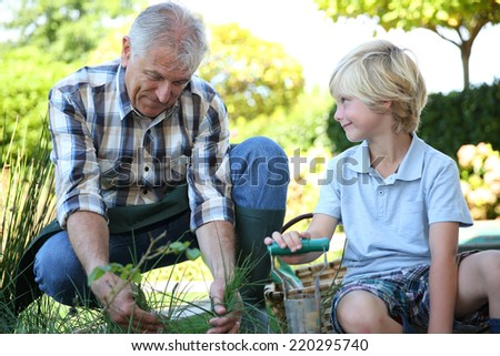 Grandpa with grandson gardening together in summer time - stock photo
