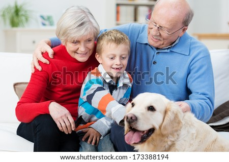 Grandparent s with their young grandson and loyal golden retriever dog sitting together in the living room as the little boy reaches out to stroke the dog - stock photo