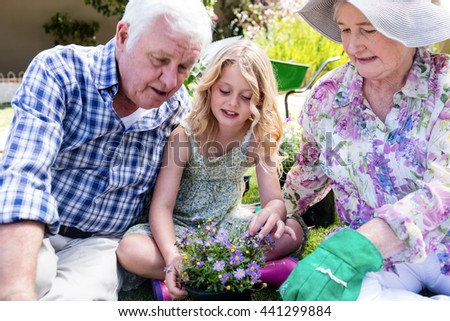 Grandparents and granddaughter sitting in the garden with a flower pot - stock photo