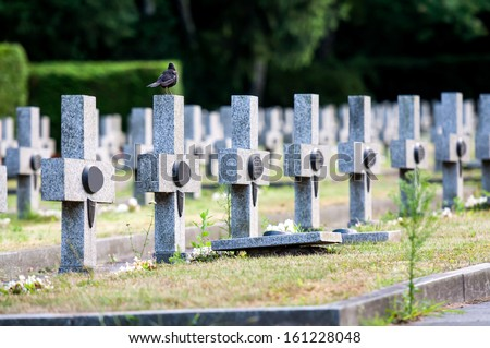 granit crosses on the graves of warriors Second World War