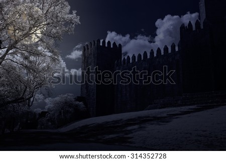 Granite european medieval castle in a full moon night with some clouds - stock photo