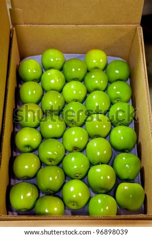Granny Smith Apples in a fruit packing warehouse - in a box