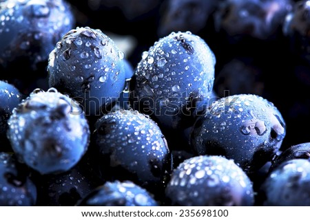 grape and water drops - stock photo