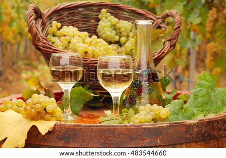 Grape and white wine on wooden barrel autumn season