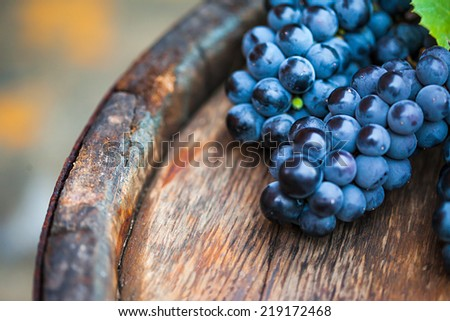 Grape on a wooden barrel. Macro image. - stock photo