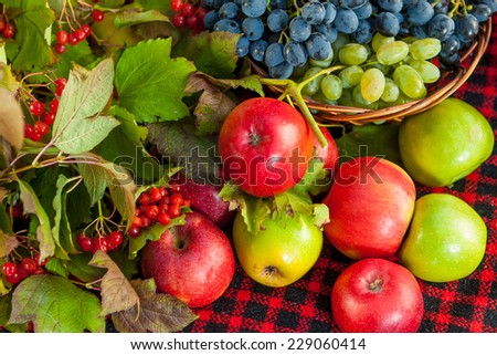 of variates of fresh apples including jonagold and mutsu and a vase ...