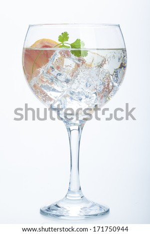 grapefruit and parsley  gin tonic isolated over white background