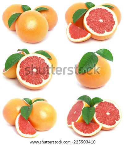 Grapefruit collection - stock photo