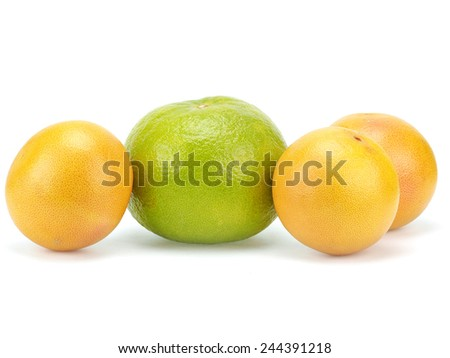 Grapefruit fruits on white background