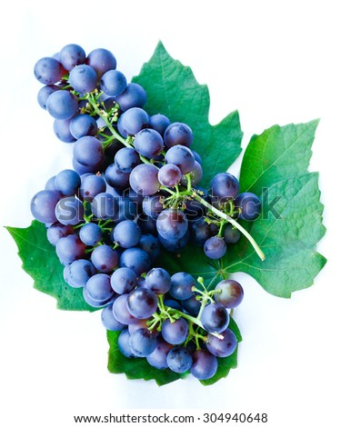 Grapes against a white background - stock photo