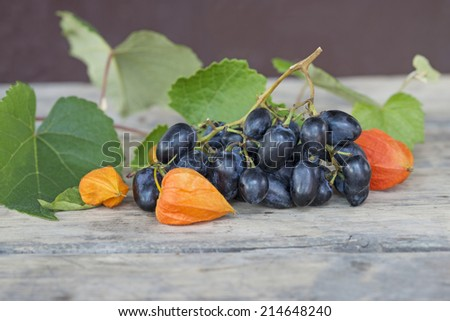Grapes and physalis  - stock photo