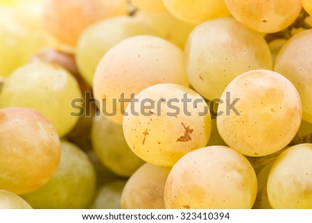 grapes as a background. close - stock photo