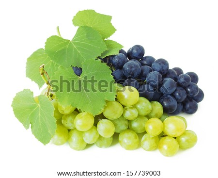 Grapes branch with fresh green leaves isolated on white background