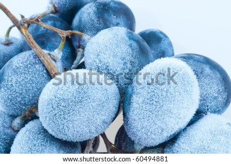 Grapes frozen. Isolation on the white - stock photo