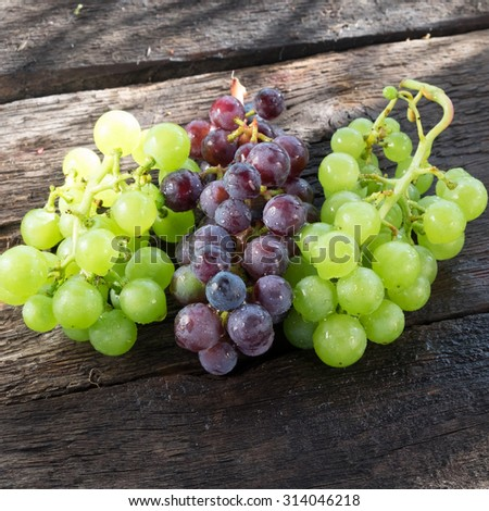 Grapes in a basket on a background of grape leaves in the sunlight - stock photo