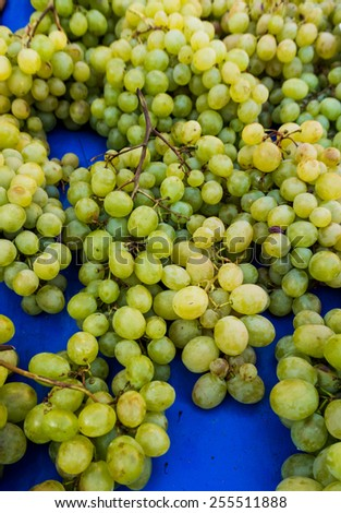 grapes in a market.  grape background - stock photo