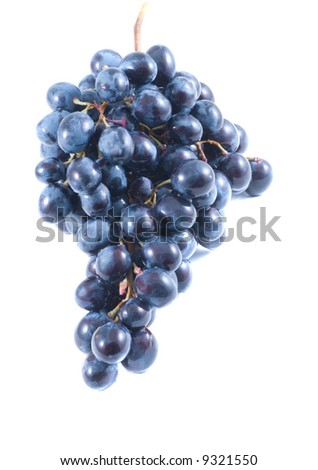 Grapes. Isolation on white