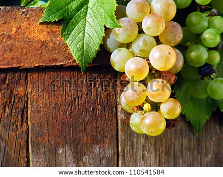 Grapes on a old wooden barrel