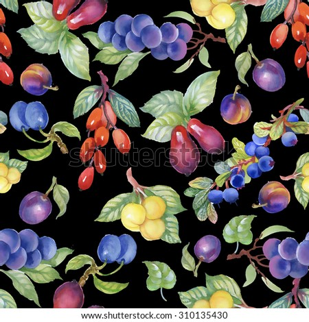 Grapes, plums, cherry-plums and dogwood berries summer watercolor seamless pattern on black background - stock photo