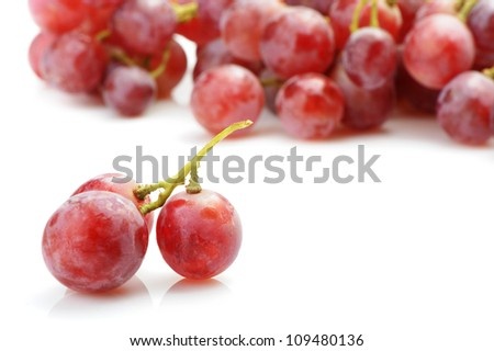Grapes red. Grapes berries in the foreground. It is isolated on a white background