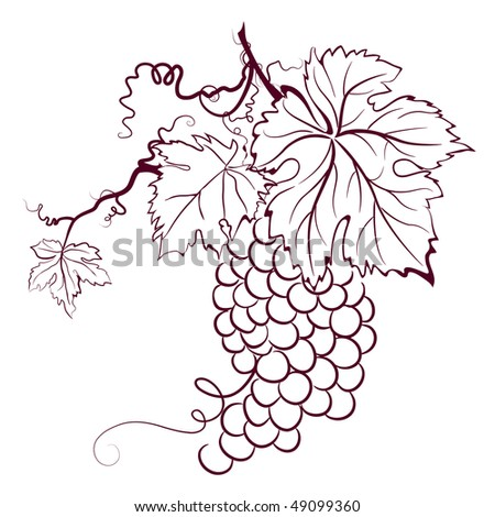 Grapes With Leaves, raster version - stock photo