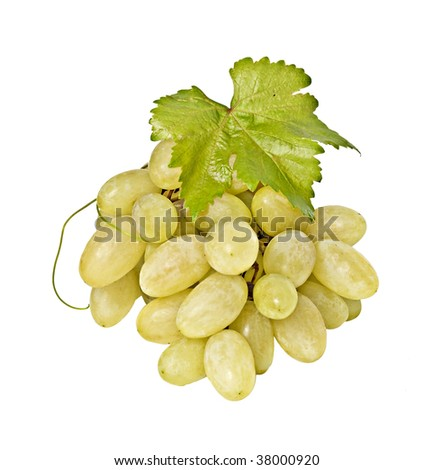 Grapevine isolated on white background
