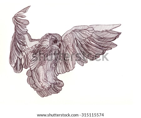 graphic illustration of flying owl black and white style hand drawn closeup portrait