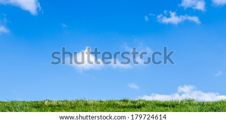 Grass and blue sky - stock photo