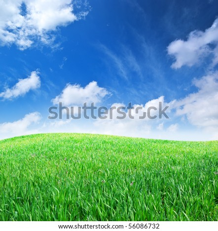 Grass and deep blue sky. Nature composition. - stock photo