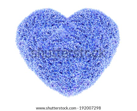 Grass and plants, small blue heart. During the Valentine season. on white background - stock photo
