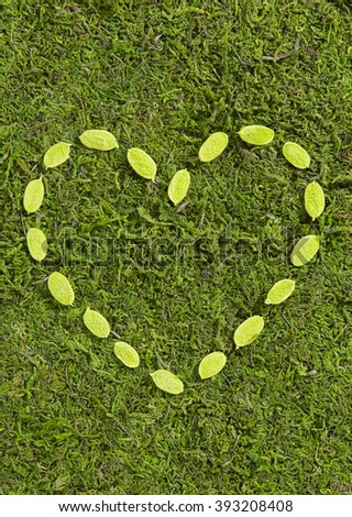 Grass and plants, small green heart - stock photo
