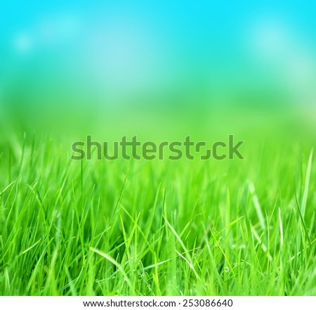 Grass and sky background - stock photo