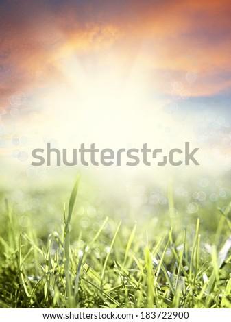 Grass and sky spring scene - stock photo