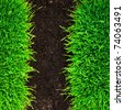 grass and soil background - stock photo