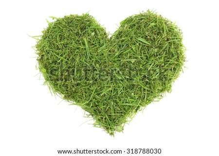Grass clippings in a heart shape, isolated on a white background - stock photo