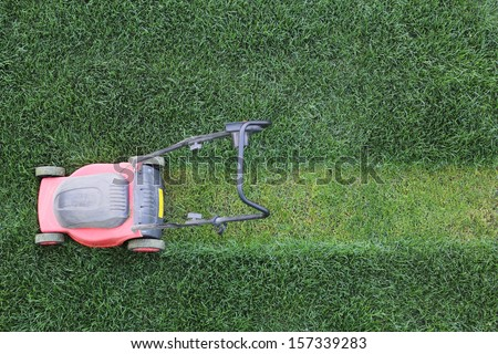 Grass cutter cuts the green  lawn