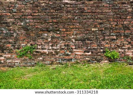 Grass field and old orange brick wall - stock photo