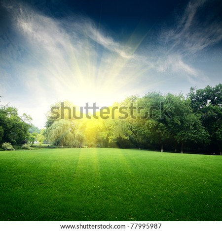 grass field with blue sky - stock photo